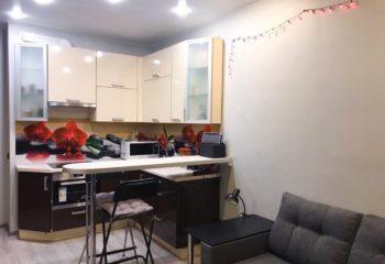 1-k-kvartira-30-m2